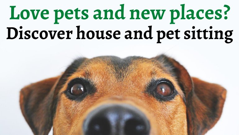 House Sitting and Pet Sitting