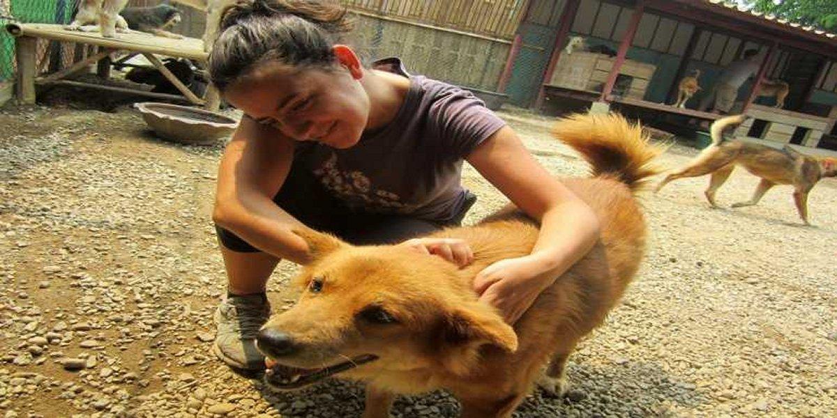 Free (or Cheap) Volunteer Work in Thailand