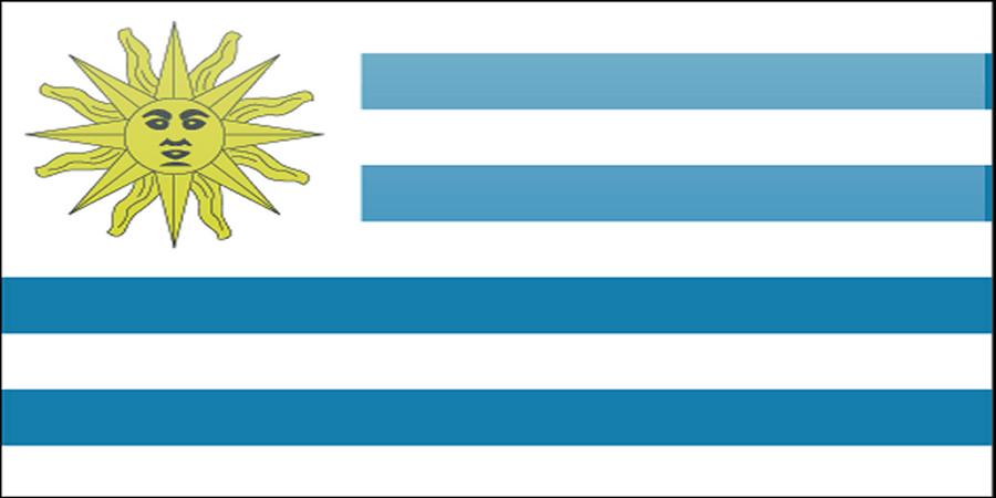 Free (or Cheap) Volunteer Work in Uruguay